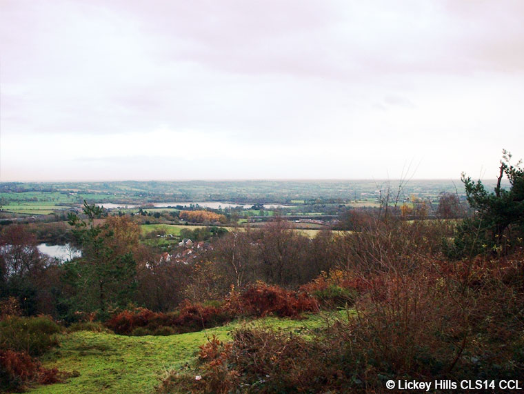 A view from Bilberry Hill, Lickey Hills Country Park